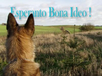 Esperanto en god ide !